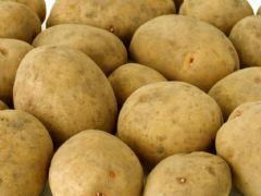 La patata di Vezzolacca